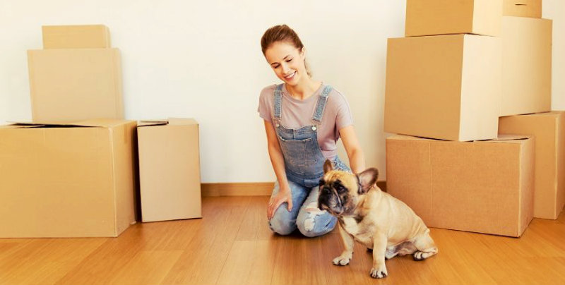 A women surrounded by cardboard boxes petting her pug
